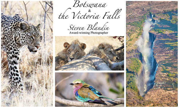African safari photography tour - Botswana
